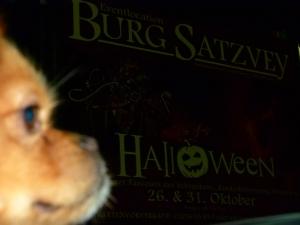 Halloween.. in Satzvey auf der Burg