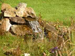 ImmoEU vermittelt naturverbundenes Wohnen